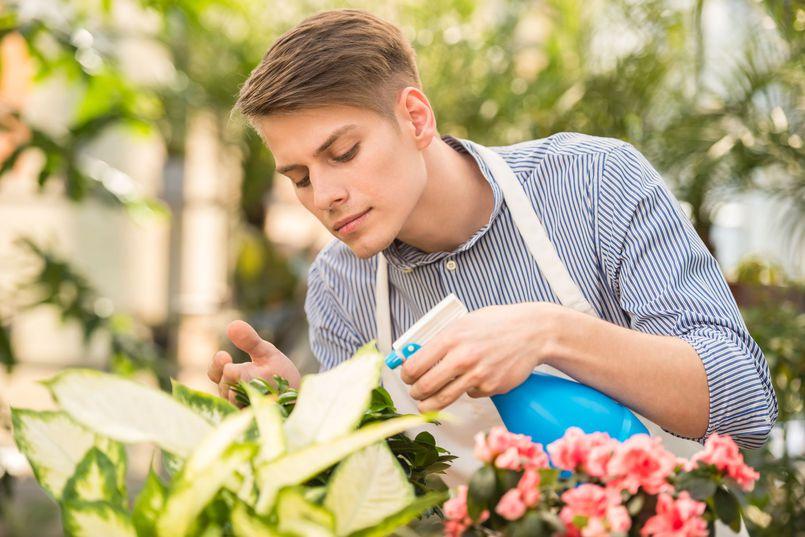Zwalczanie chorób roślin ogrodowych